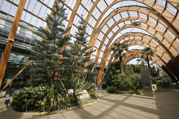 Winter Gardens Sheffield Get inspired with home design and