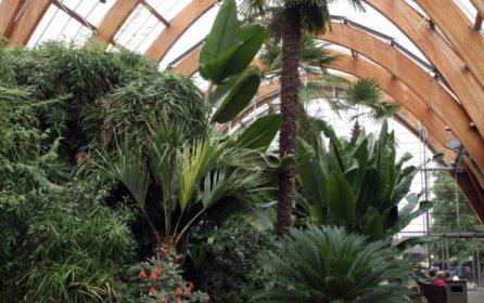 Sheffield Peace Gardens wins Lifetime Achievement Award @ SDA 2018